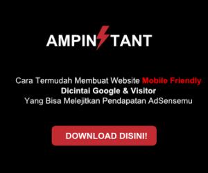 amp instann wordpress theme 336x280