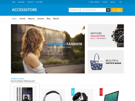 Store Villa Wordpress Theme Free