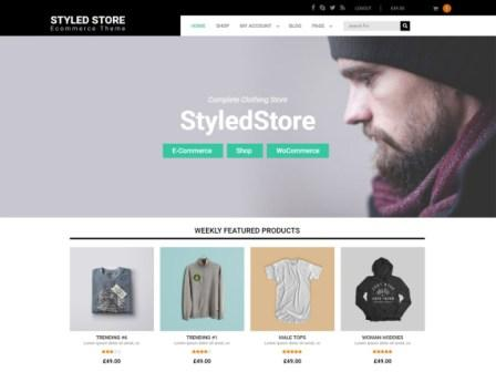 Styled Store Wordpress Theme Free